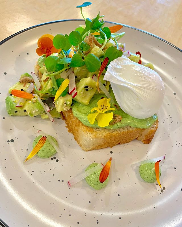 Week special: Diced Avocado on Toasted white bread & Poached Egg... Feta, Sour cream and baby spinach cream, Diced Avos with Toasted Sesame seeds and Fried Shallots, Radish Matchsticks and Poached Egg. 😋😋 #ourscafe #ourscafemt #weekspecial #thepiratecrew #cafe #food #foodies #chef #cheflife #cafefood #brunch #mountmaunganui #tauranga #bayofplenty #newzealand