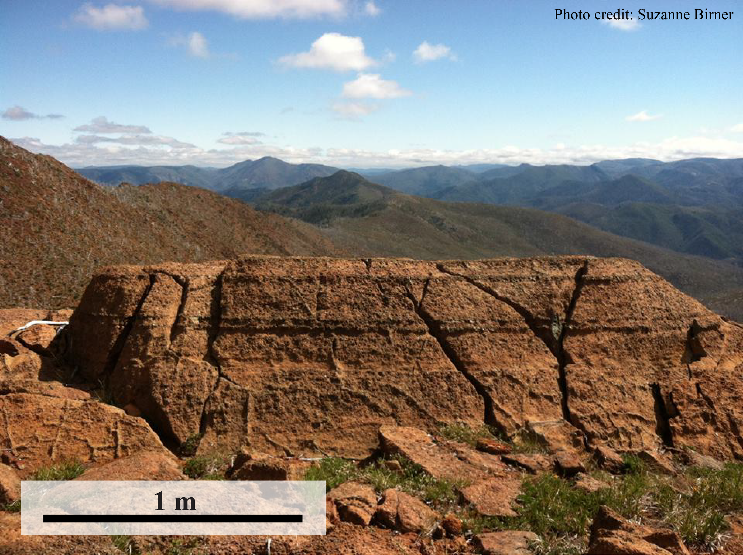 Mantle rocks in the Klamath Mountains! The horizontal pyroxene layering in this outcrop is common across the Fresno Bench area.