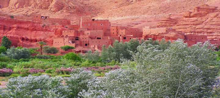 explore-roses-valley-morocco.jpg
