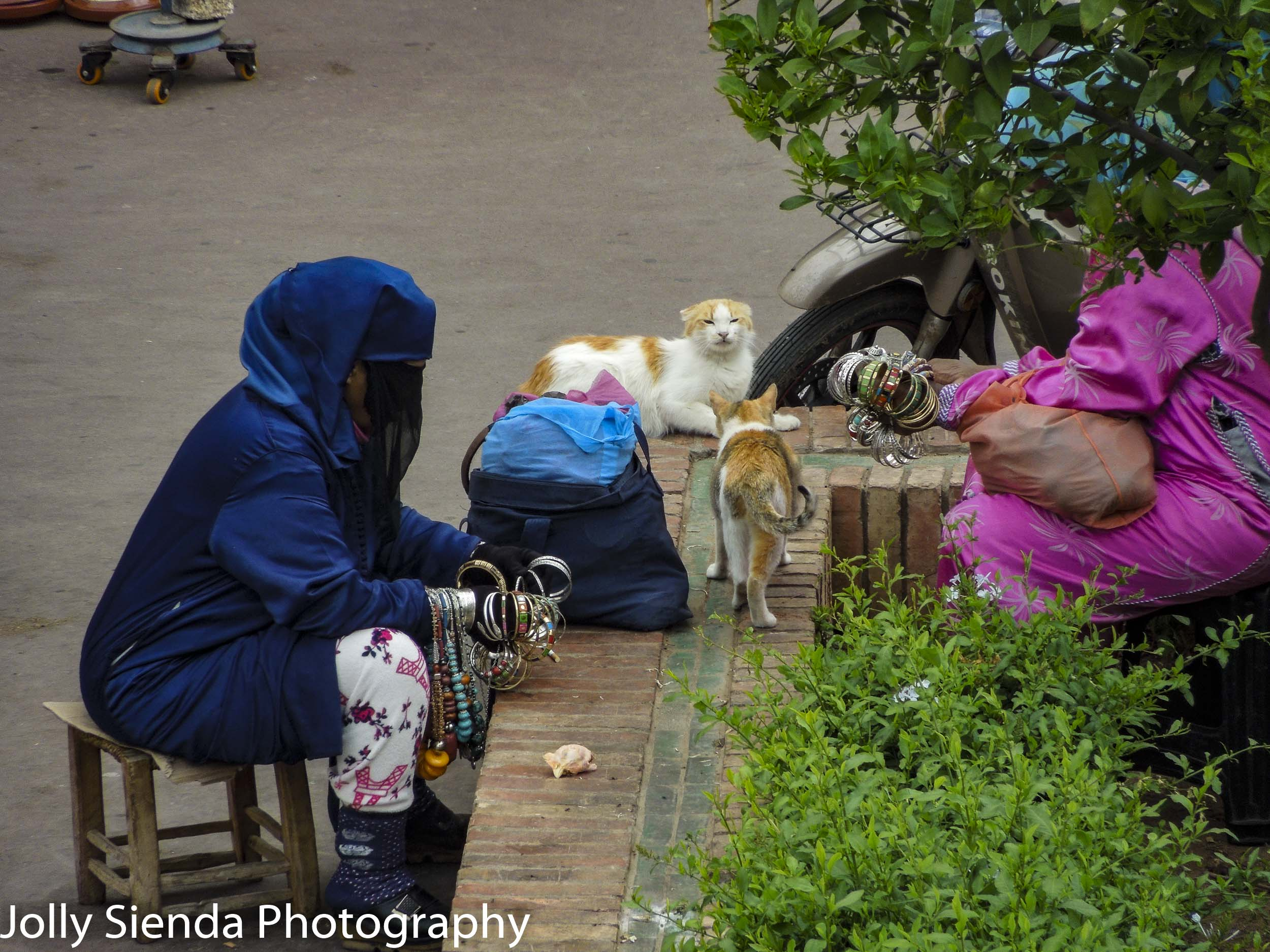 Cat fight and a veiled woman selling braclets