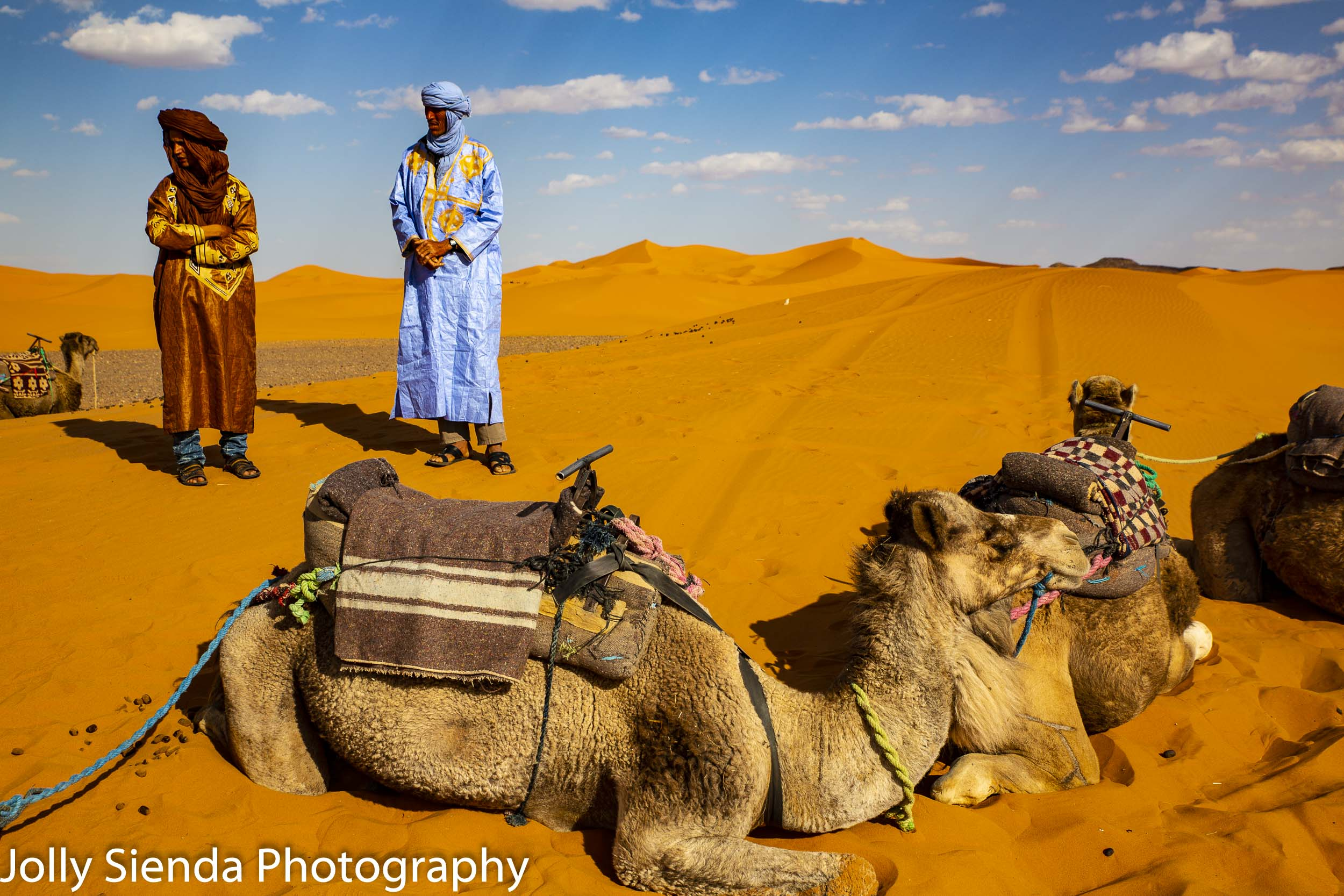 Camel handlers and camels