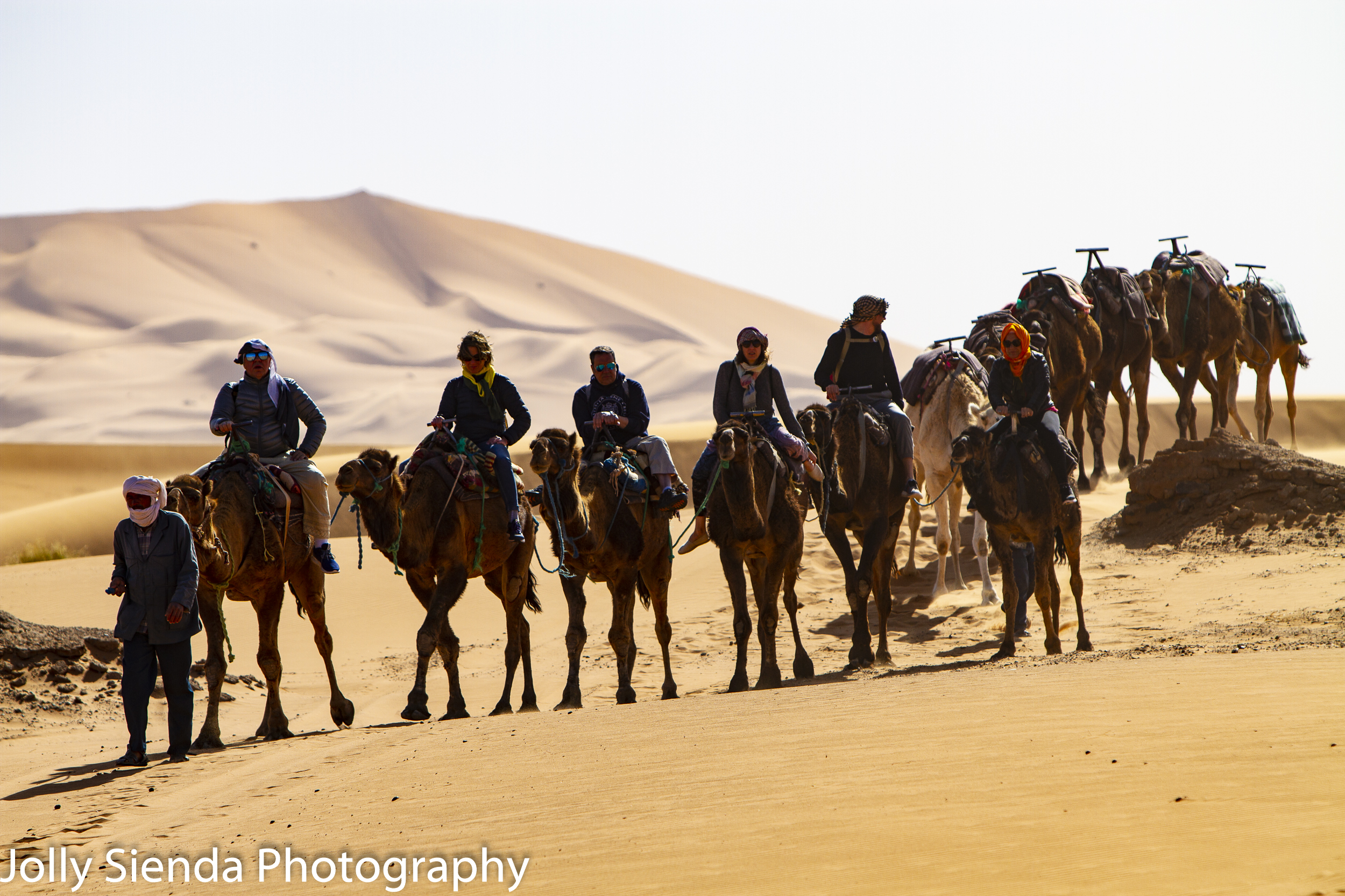 Camel trek at the Sahara Desert
