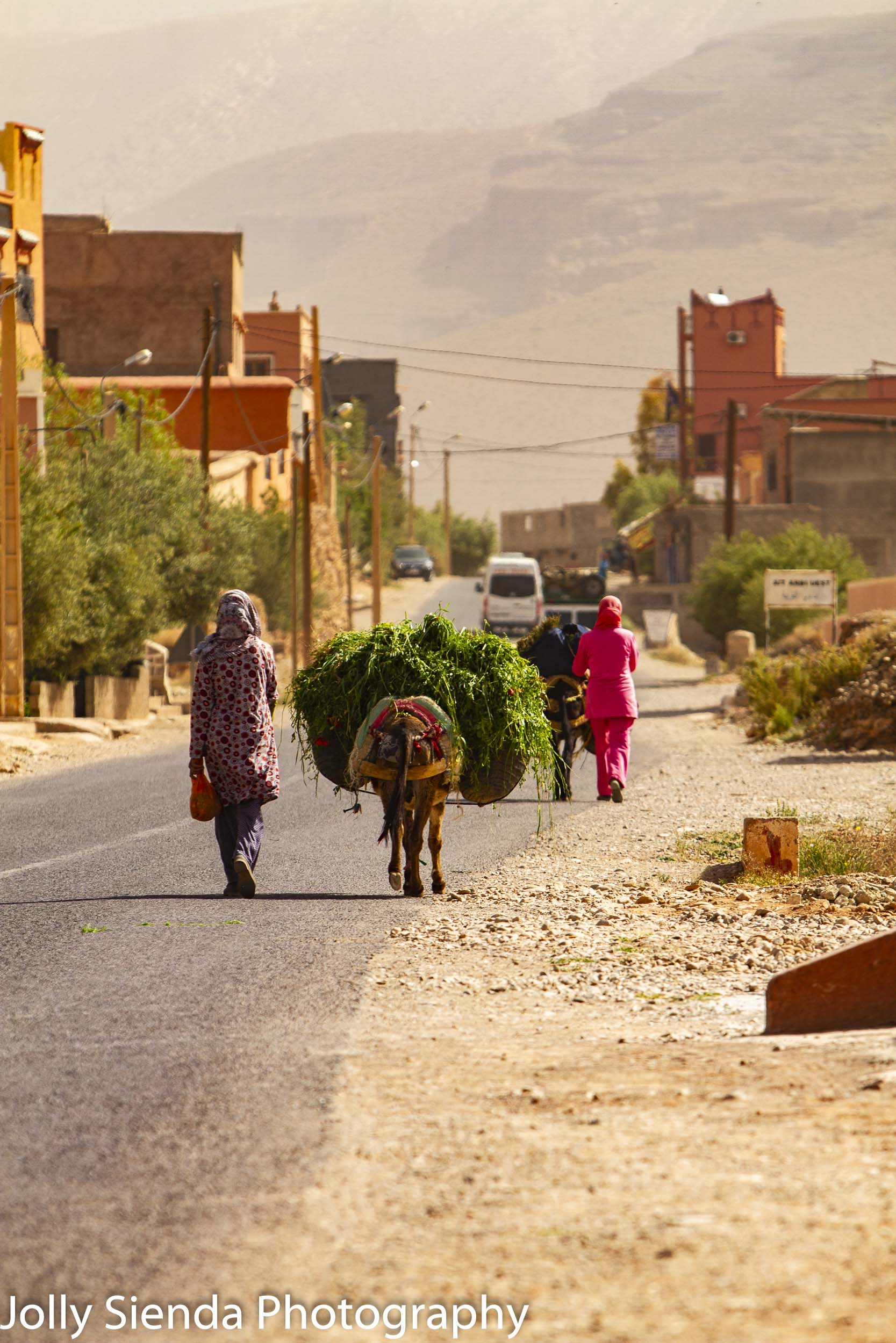 Muslim women and donkeys with grasses on the road