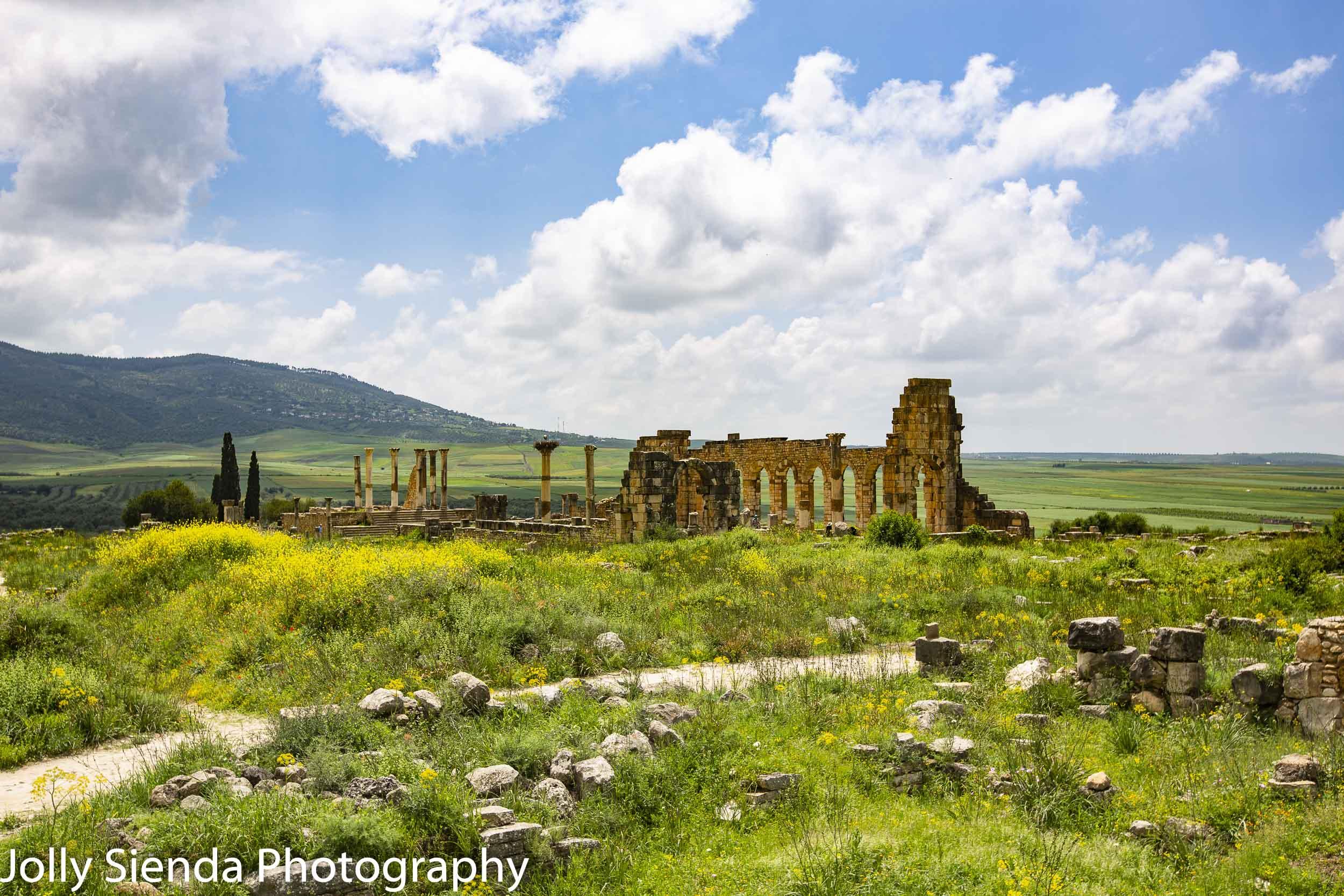 Basilica and capitol Roman ruins, Volubilis