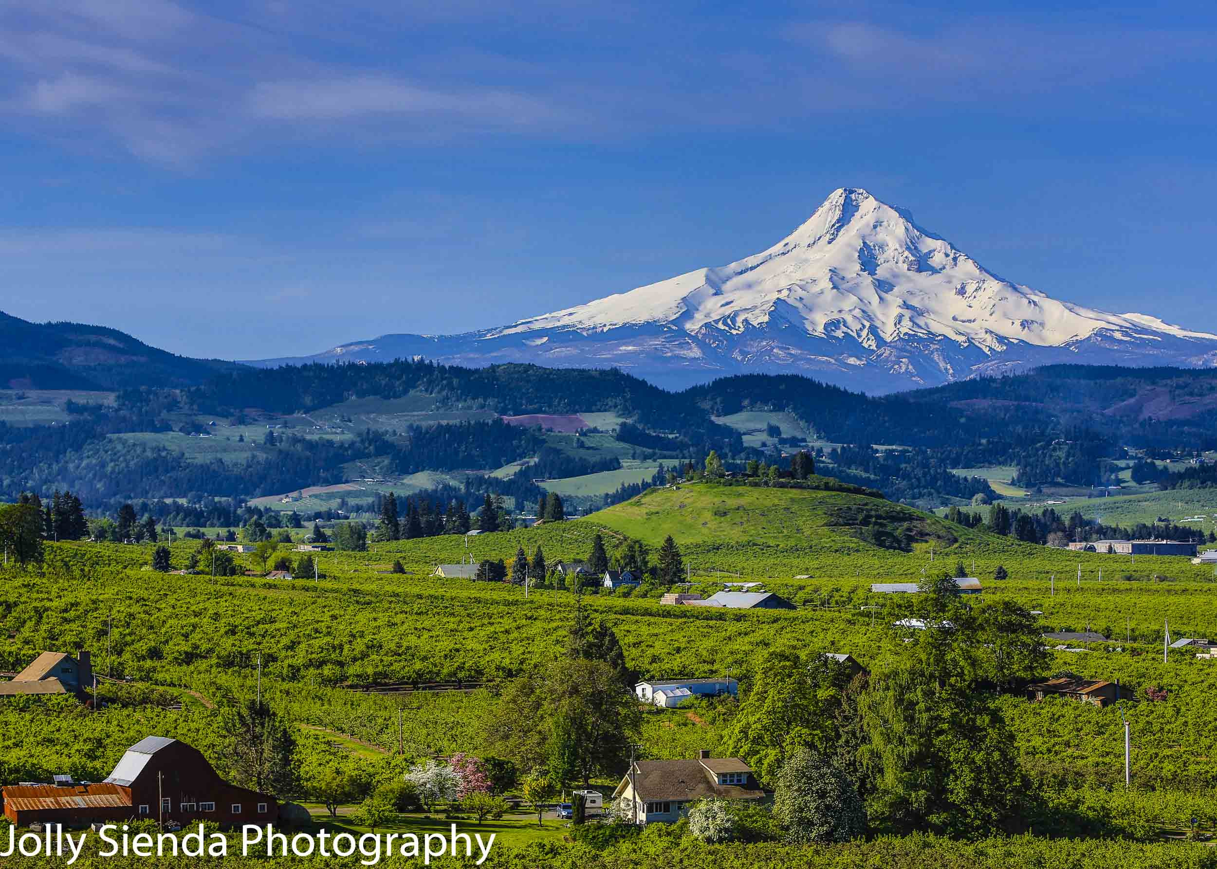 Snow Capped Mount Hood, Red Barn, Farms, and the Hood River Vall