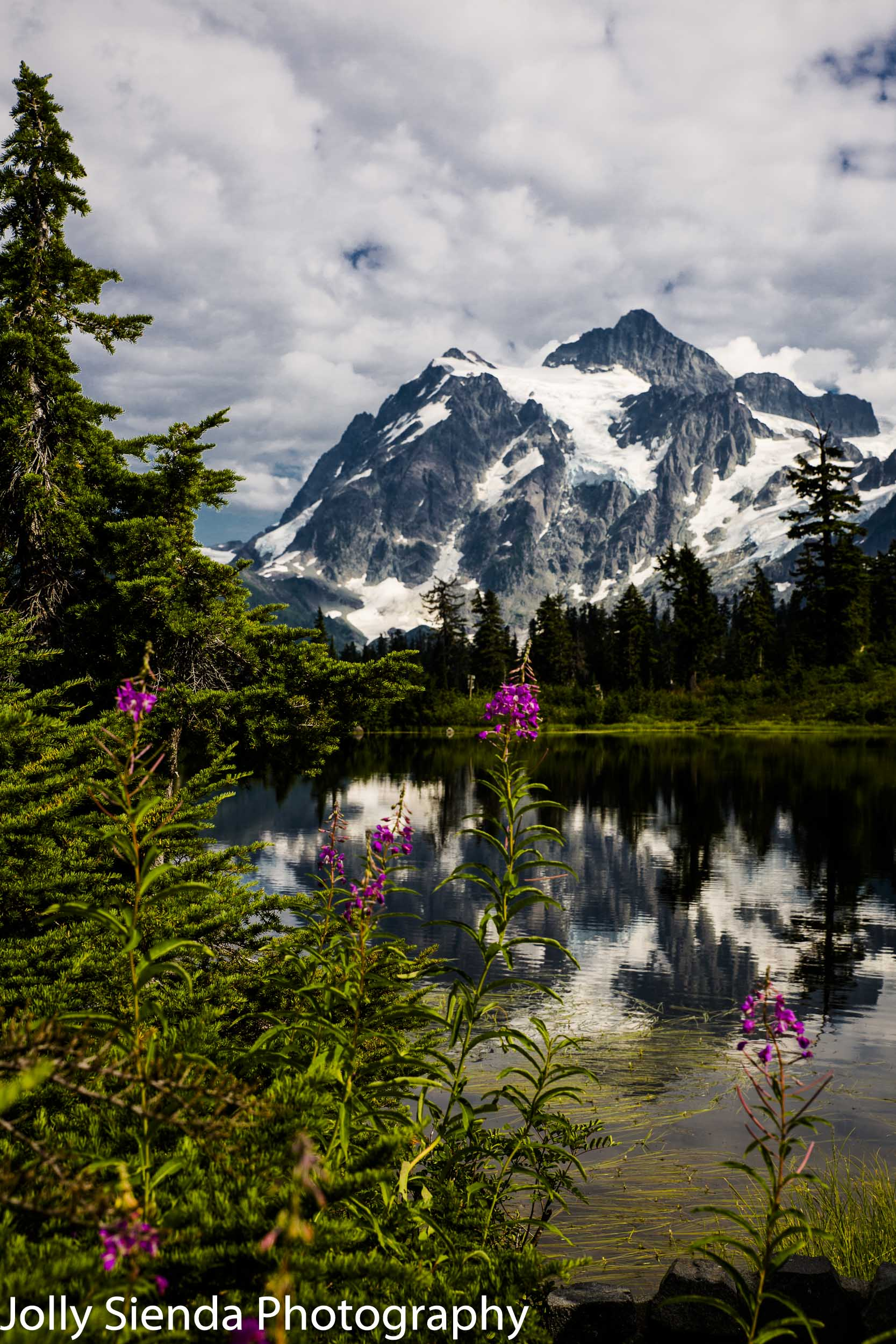 Mount Shuksan, lupins, and Heather Lake