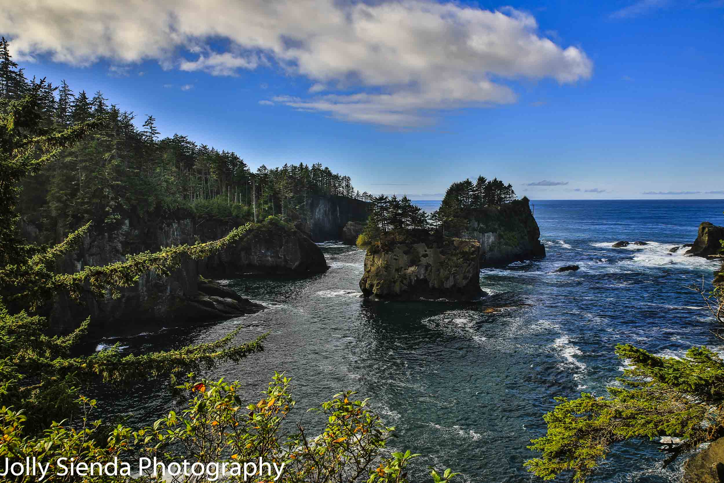 Two islands off rugged coast at Cape Flattery