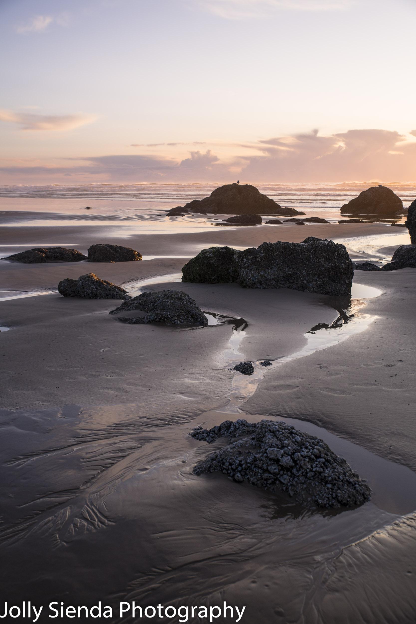 Wet haystack rocks make a zig zag pattern with tide pools, wet s