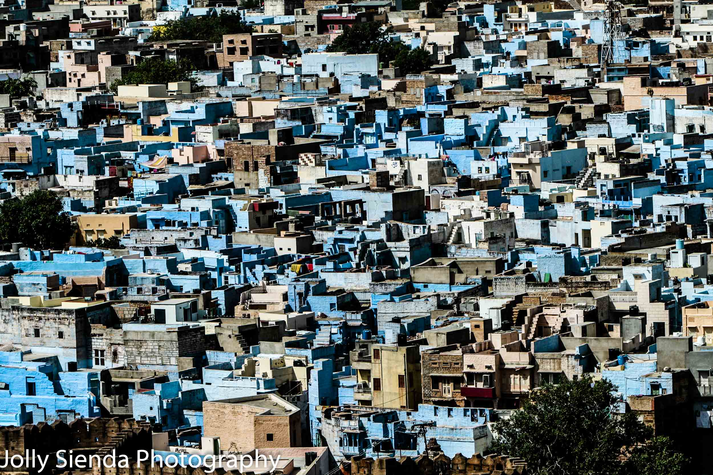 Aerial View of the Blue City Buildings of Jodhpur