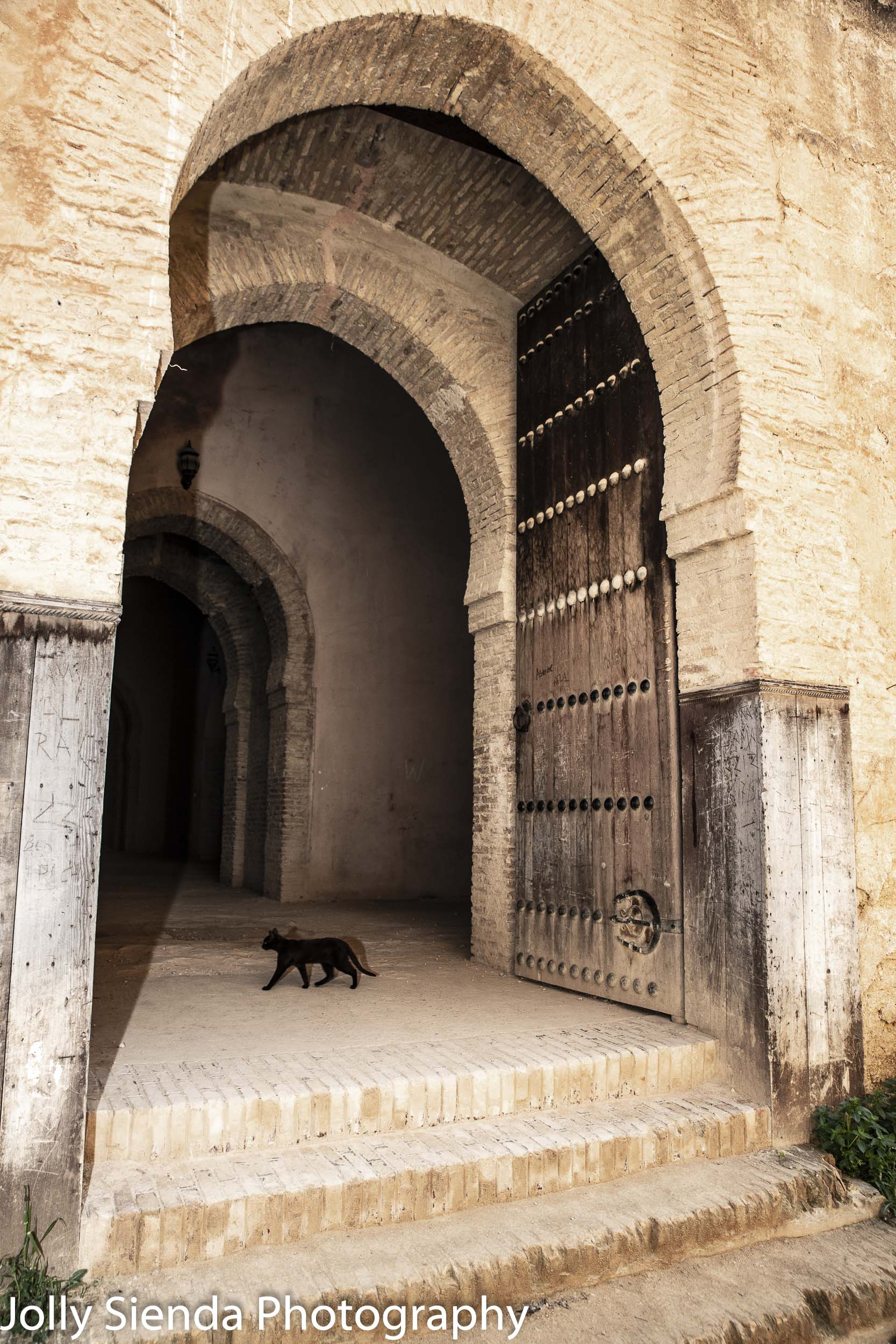 Black cat under an Moroccan arch door
