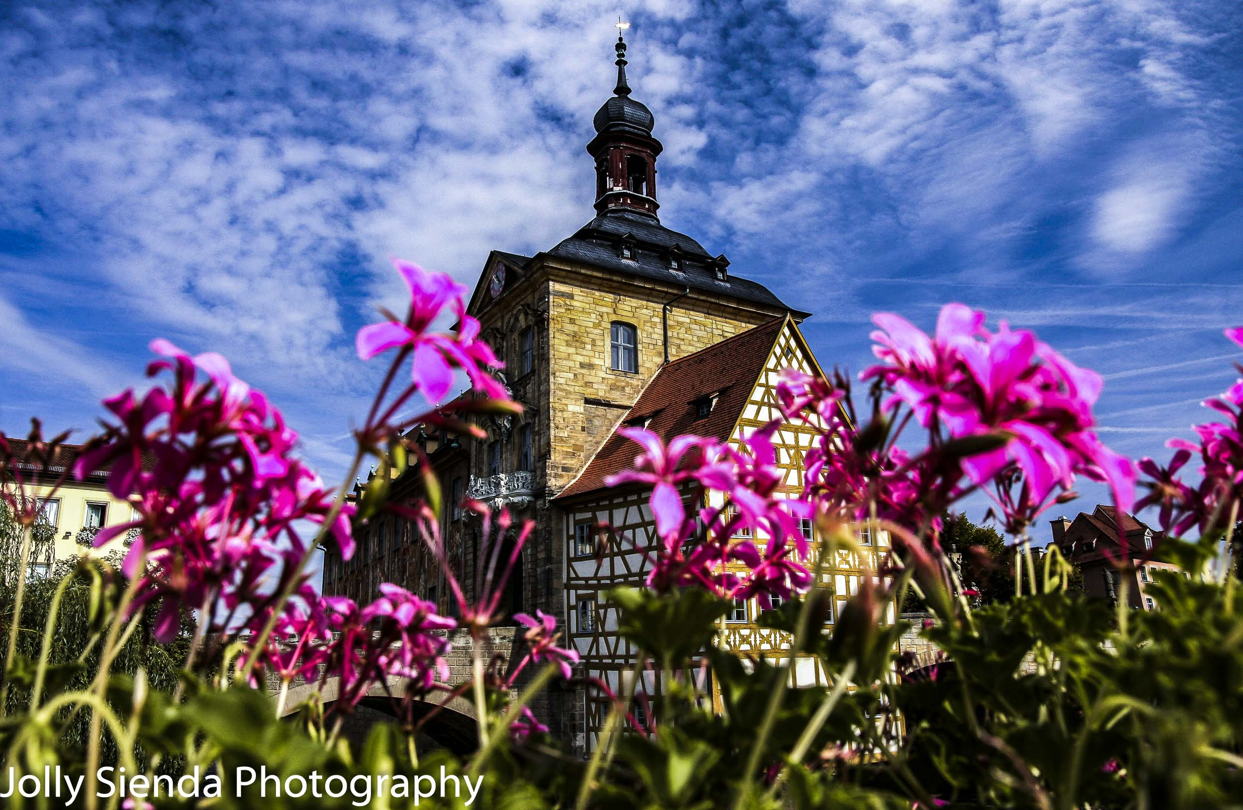Bamberg's City Hall, Altes Rathaus, with pink flowers