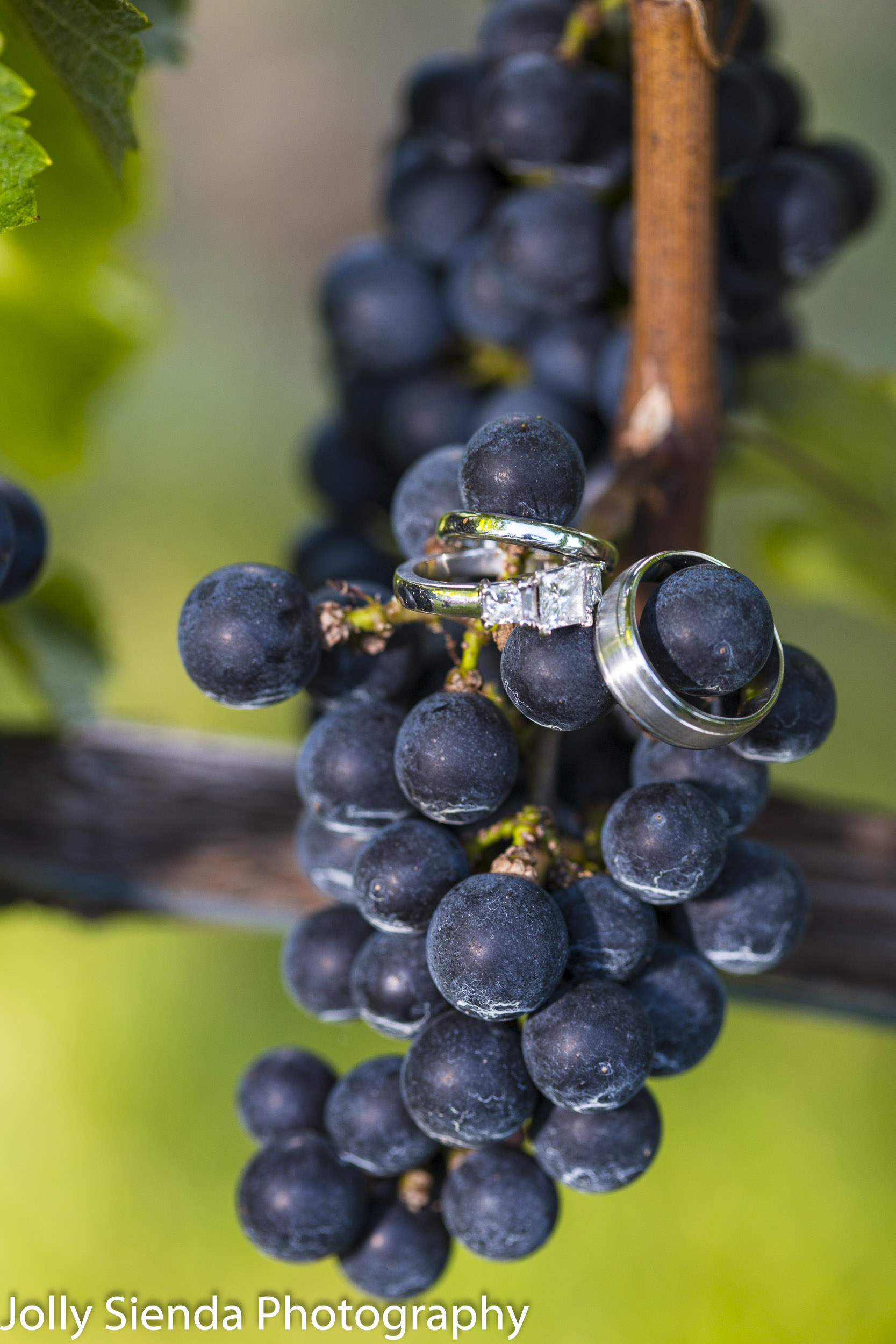 Weddings rings and grapes, vineyard wedding