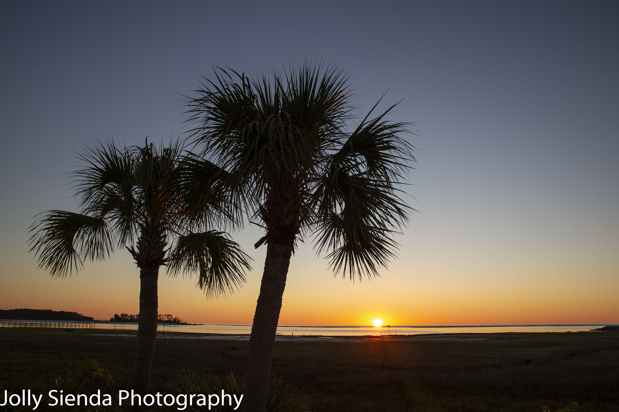 Sunrise over the marsh and palm trees at Fripp Island; a barrier island off of South Carolina