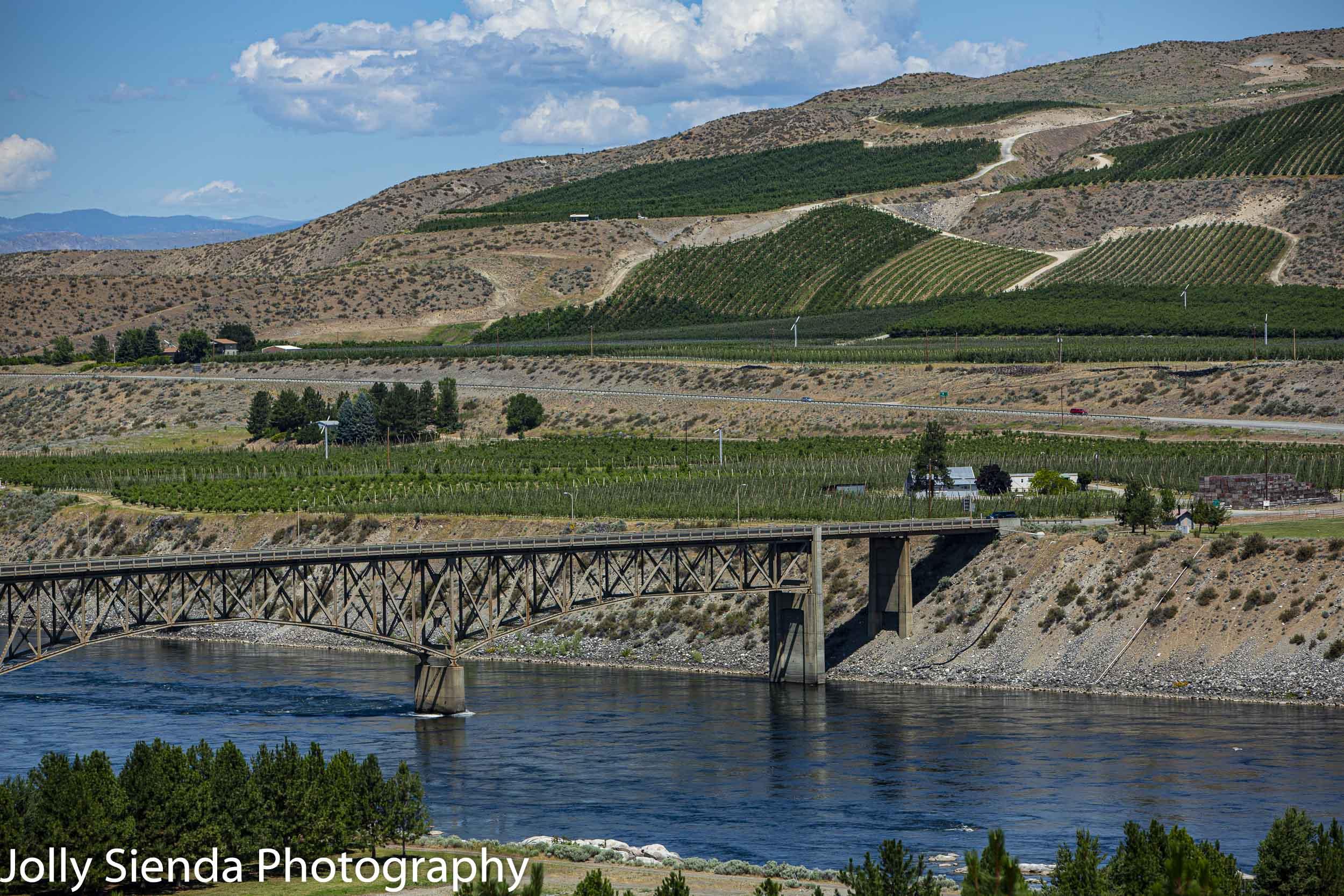 Bridgeport Bridge, orchards and vineyards near Chief Joseph Dam, WA.