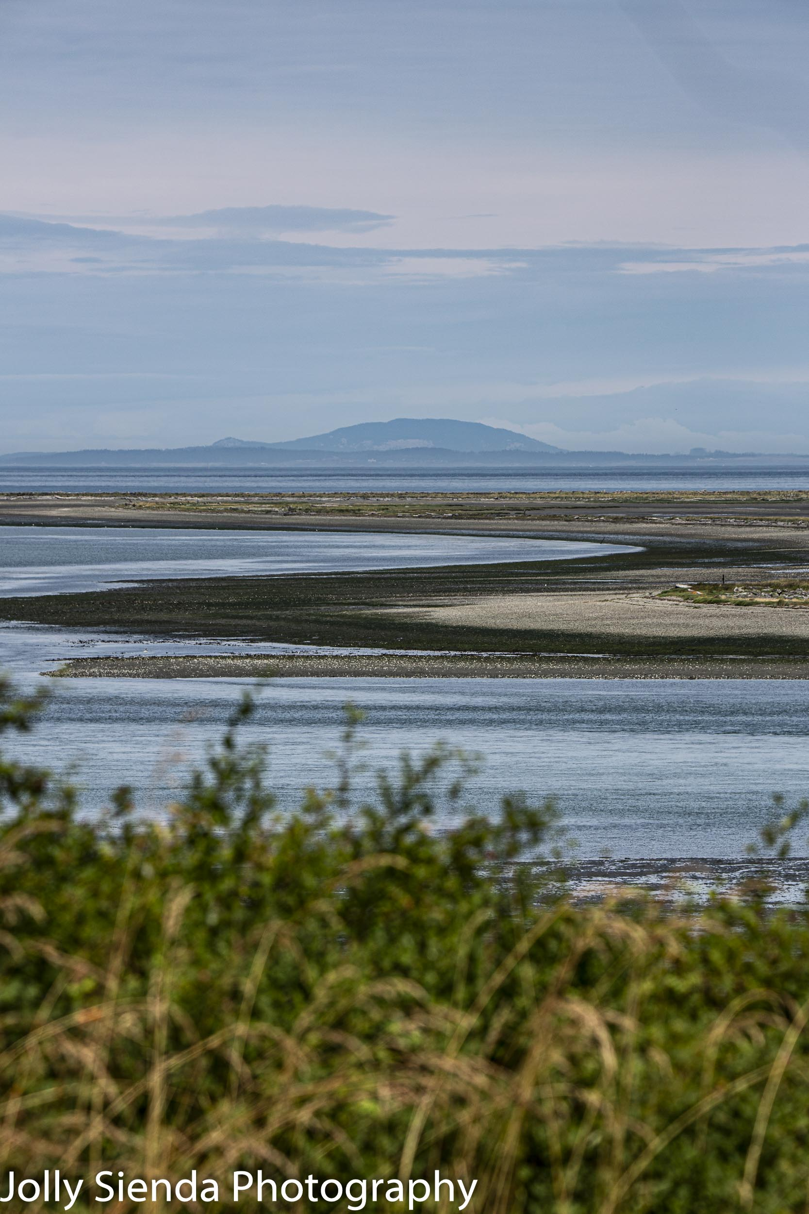 Curve of the Dungeness Spit at low tide