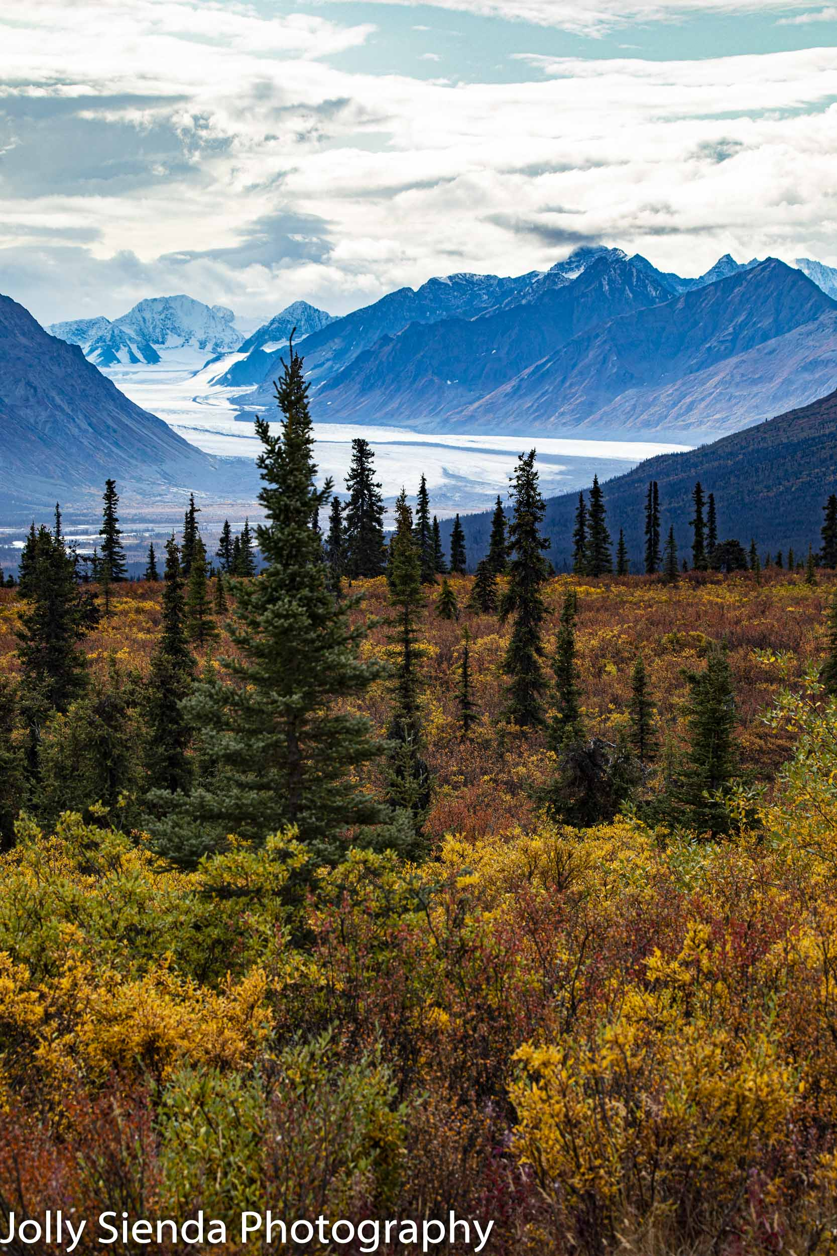 Autumn color and the Knik Glacier river bed