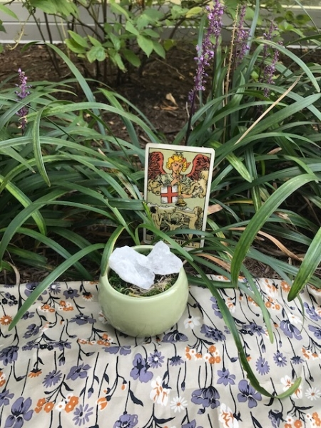 """Judgment card just chillin' in the flowers with its energetic bud white calcite. A daddylongleg tried to creep and Judgment card was all """"TO THE LEFT TO THE LEFT"""""""