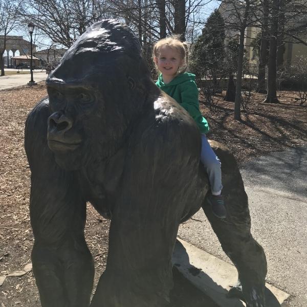 Told ya, big gorilla snapshot at the zoo...