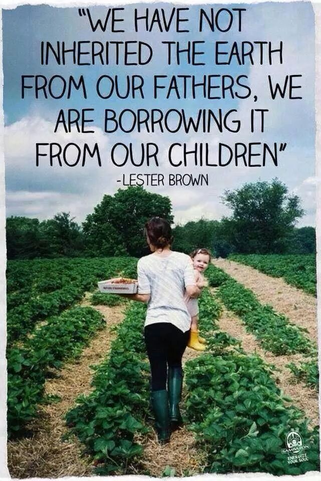 What kind of environment will we leave future generations?   Mary's Heirloom Seeds