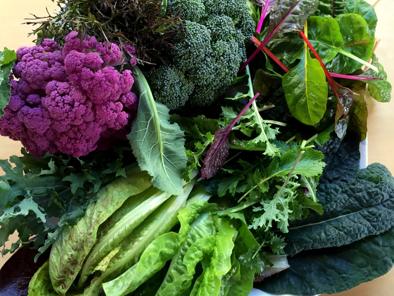 February 10, 2015   A   gift tray from the garden–purple cauliflower, mustard greens, broccoli, Swiss chard, spicy greens, Tuscan kale, lettuce, red winter kale.