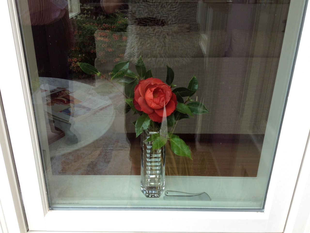 September 26, 2014    Window by the front door.