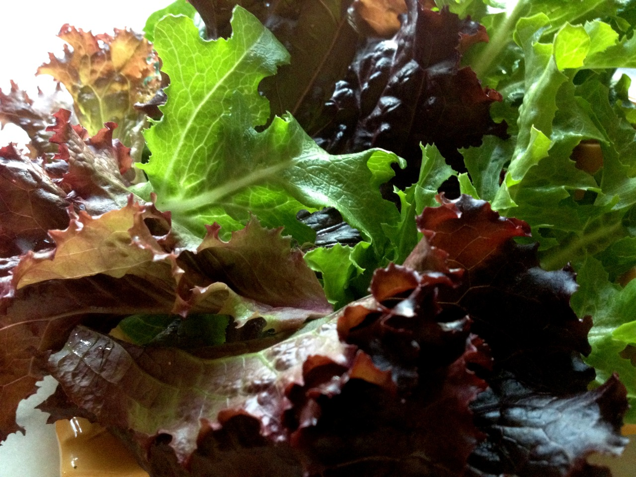 """""""Let things taste of what they are.""""    Alice Waters in The Art of Simple Food"""