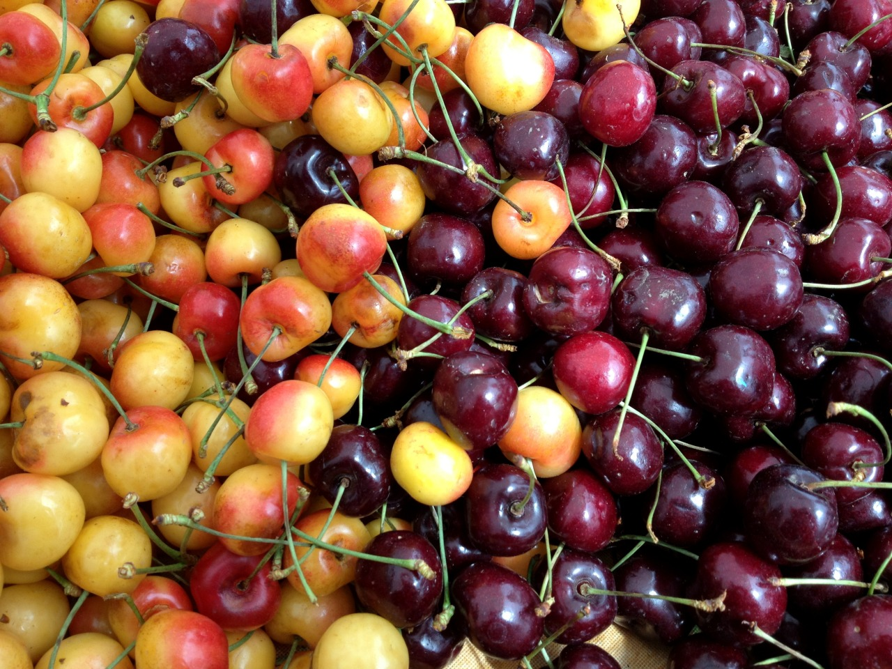 Cherries at a farmers market in Oregon, near Portland. We just ate the last handful back in San Diego.