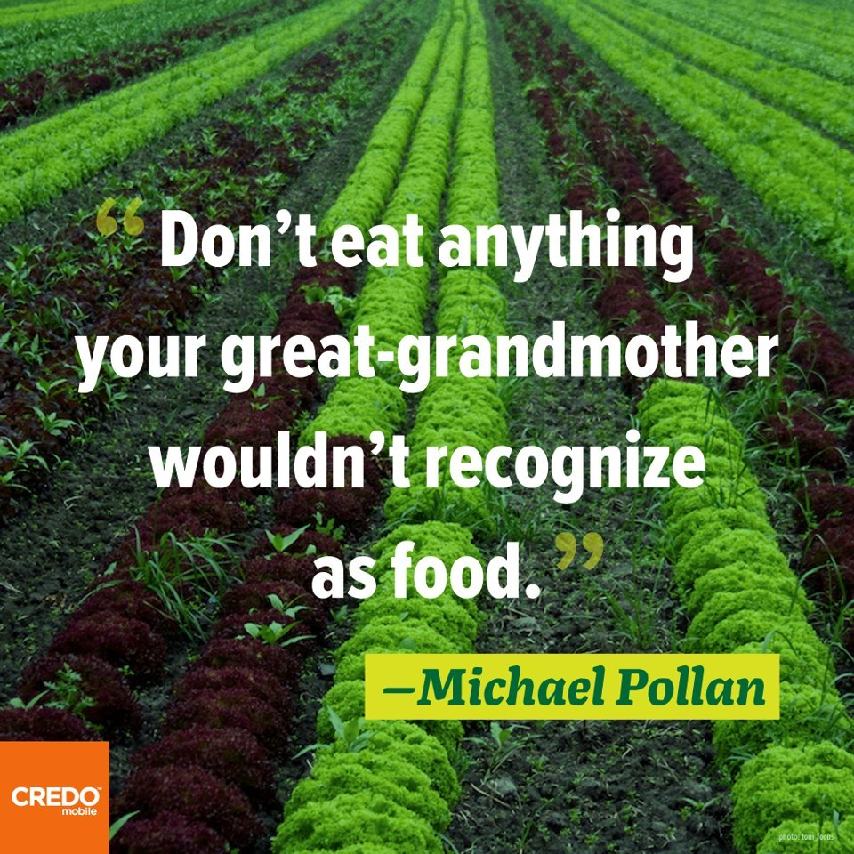 """Imagine your great-grandmother at your side as you roll down the aisles of the supermarket…there are now thousands of foodish products in the supermarket that our ancestors simply wouldn't recognize as food."" –Michael Pollan"