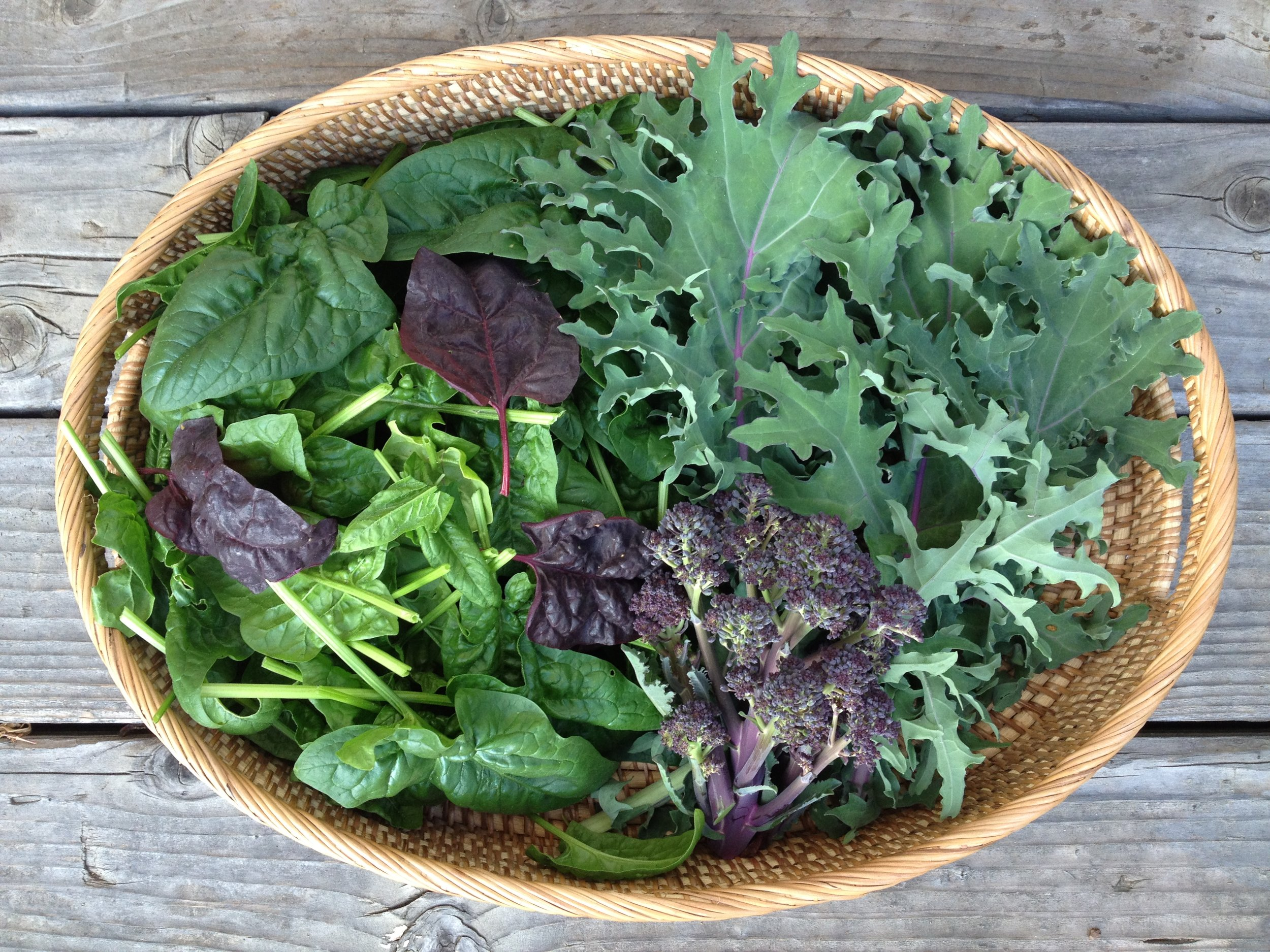 Purple-sprouting broccoli, spinach and red winter kale