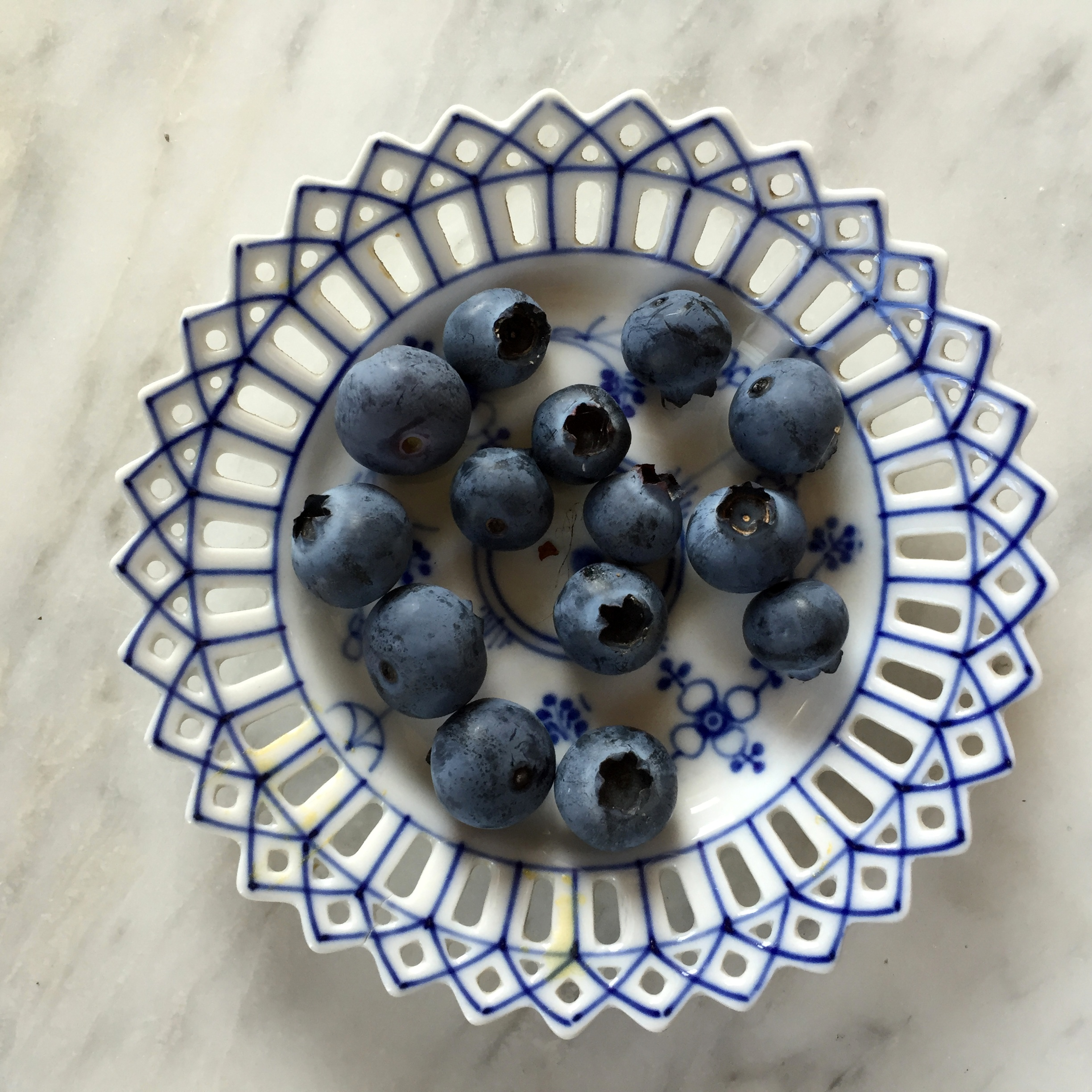 EG Blueberries 6-26-16 FS.JPG
