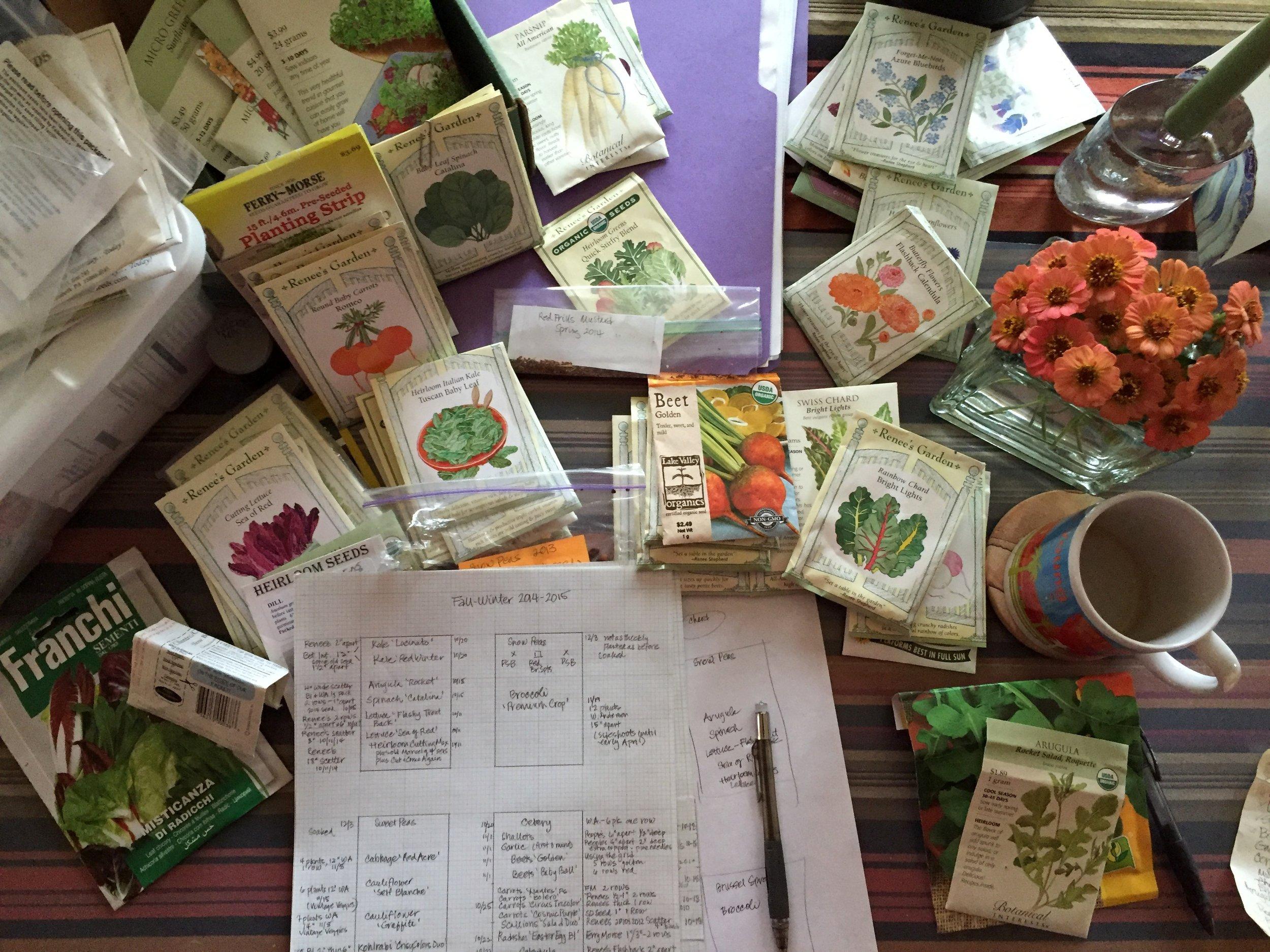 Planning the winter garden.
