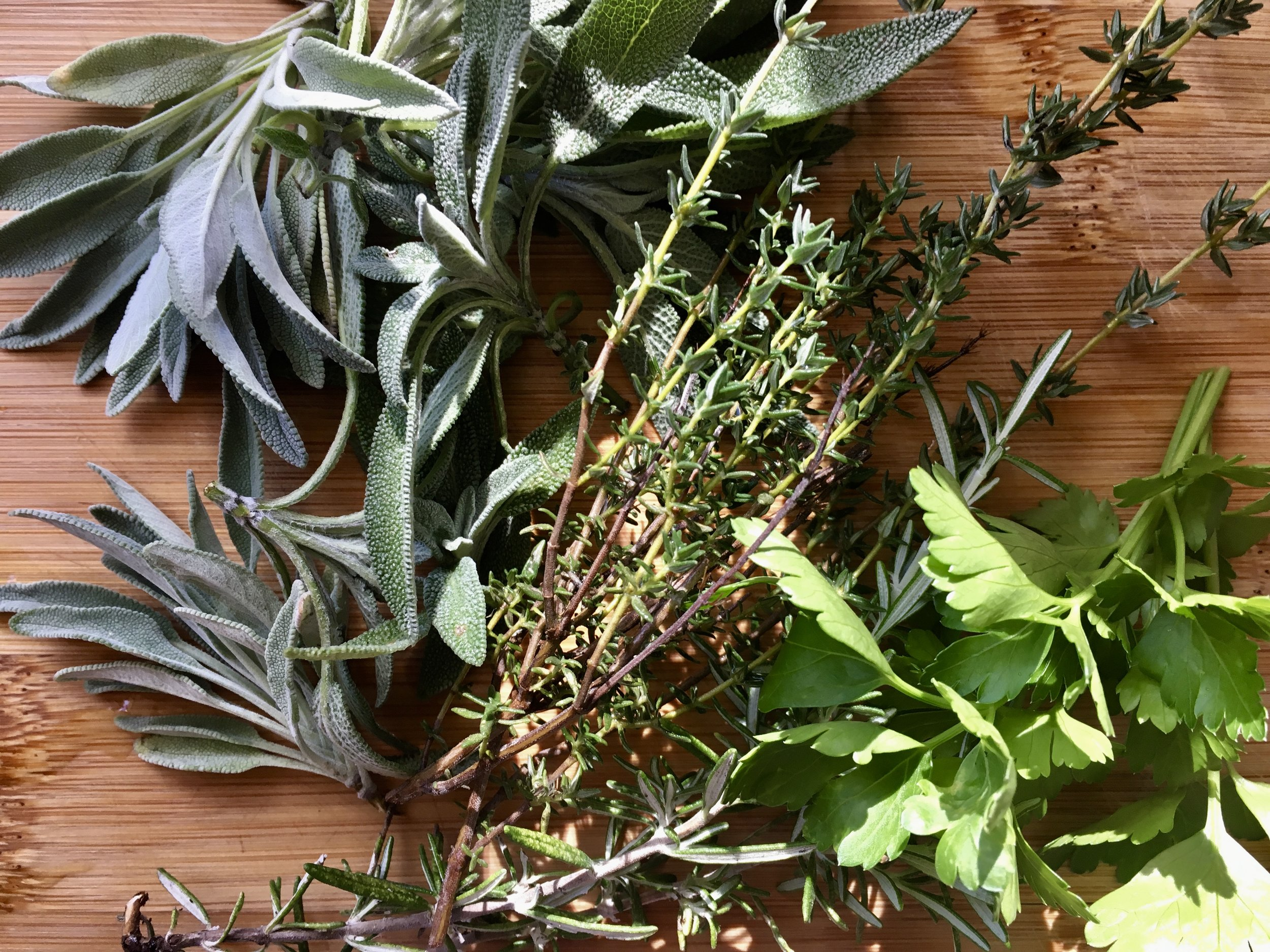 Sage, thyme, rosemary and parsley from the garden