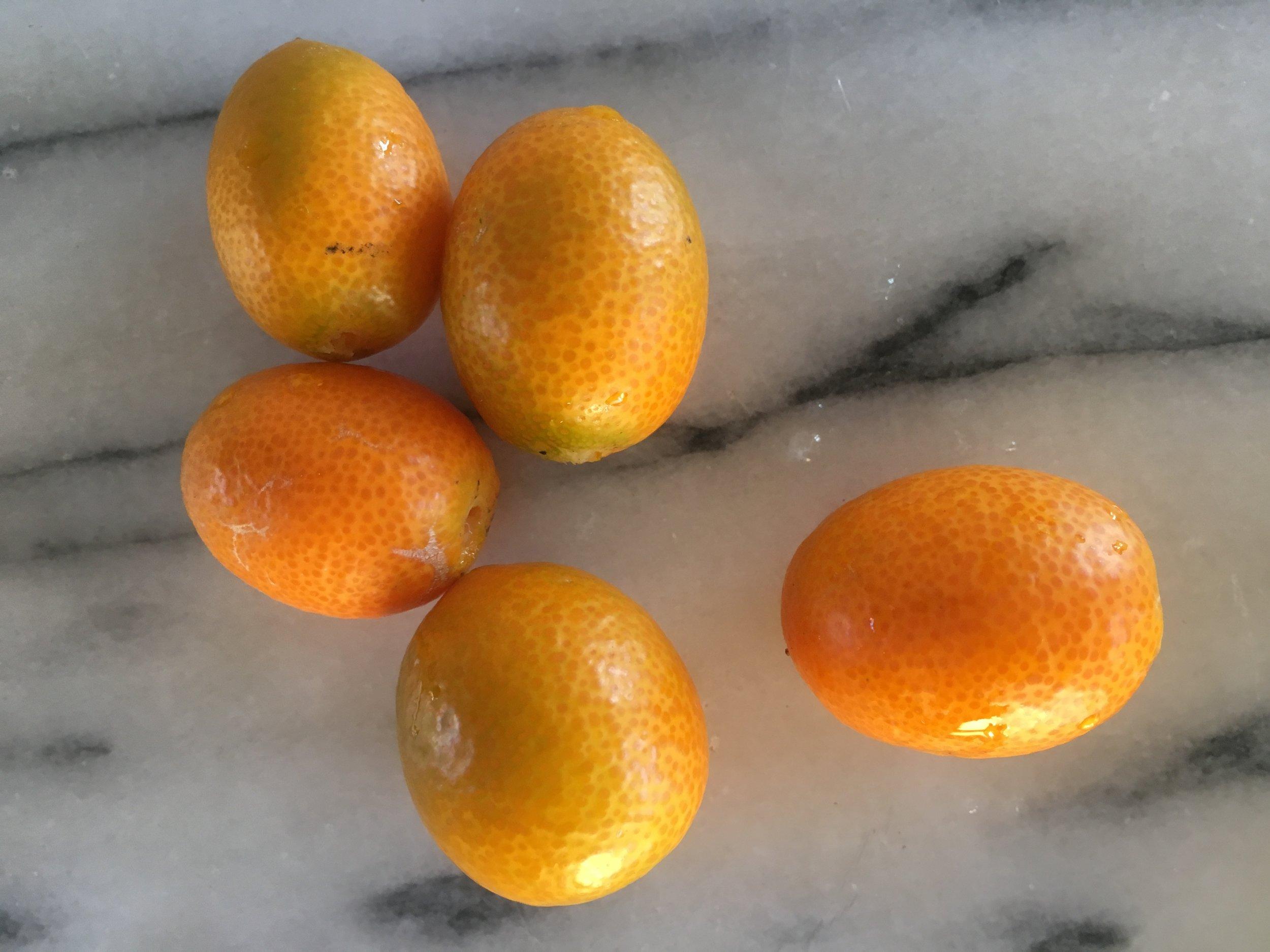 'Nagami' kumquats