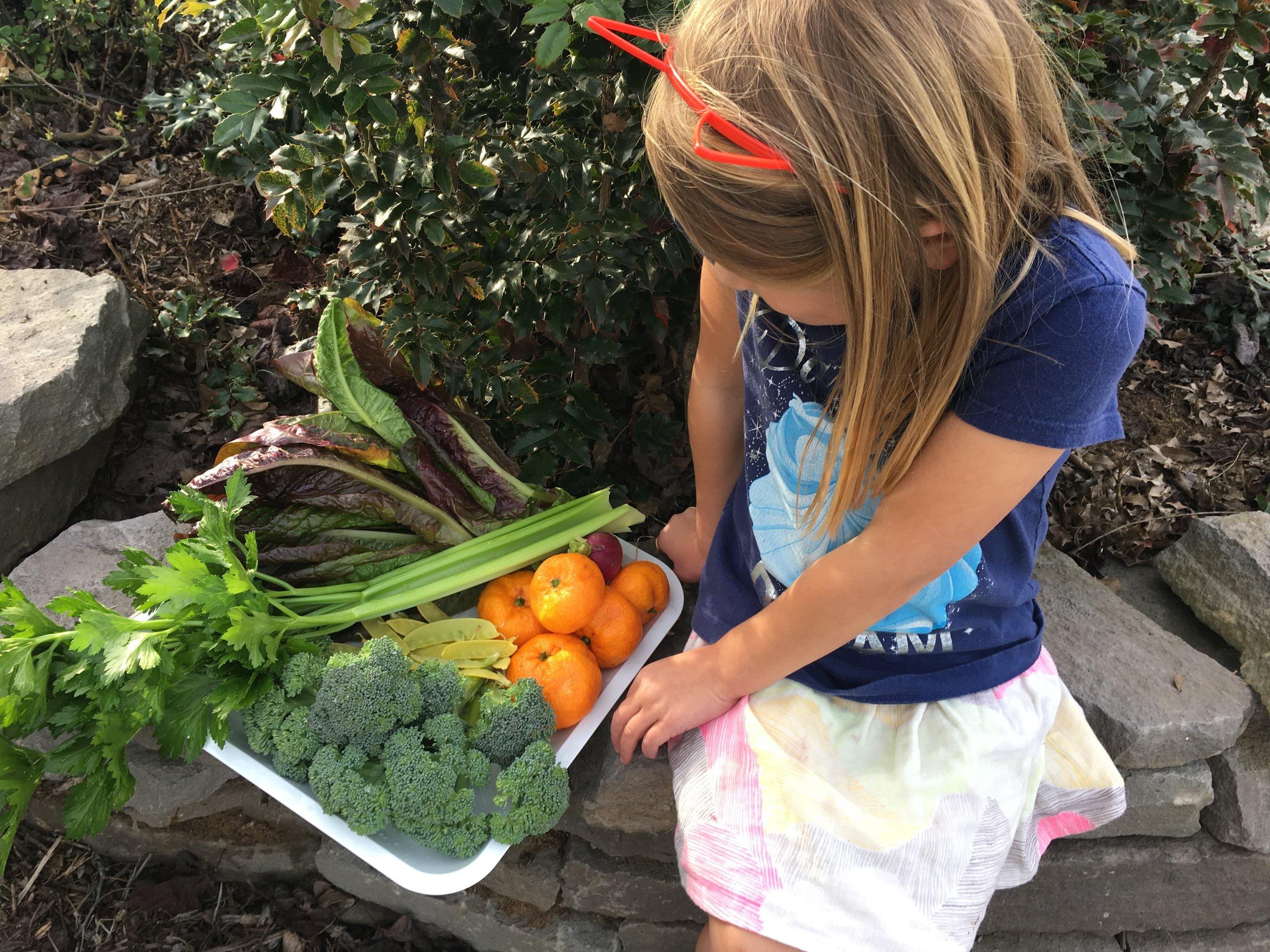 Garden goodness for neighbors.
