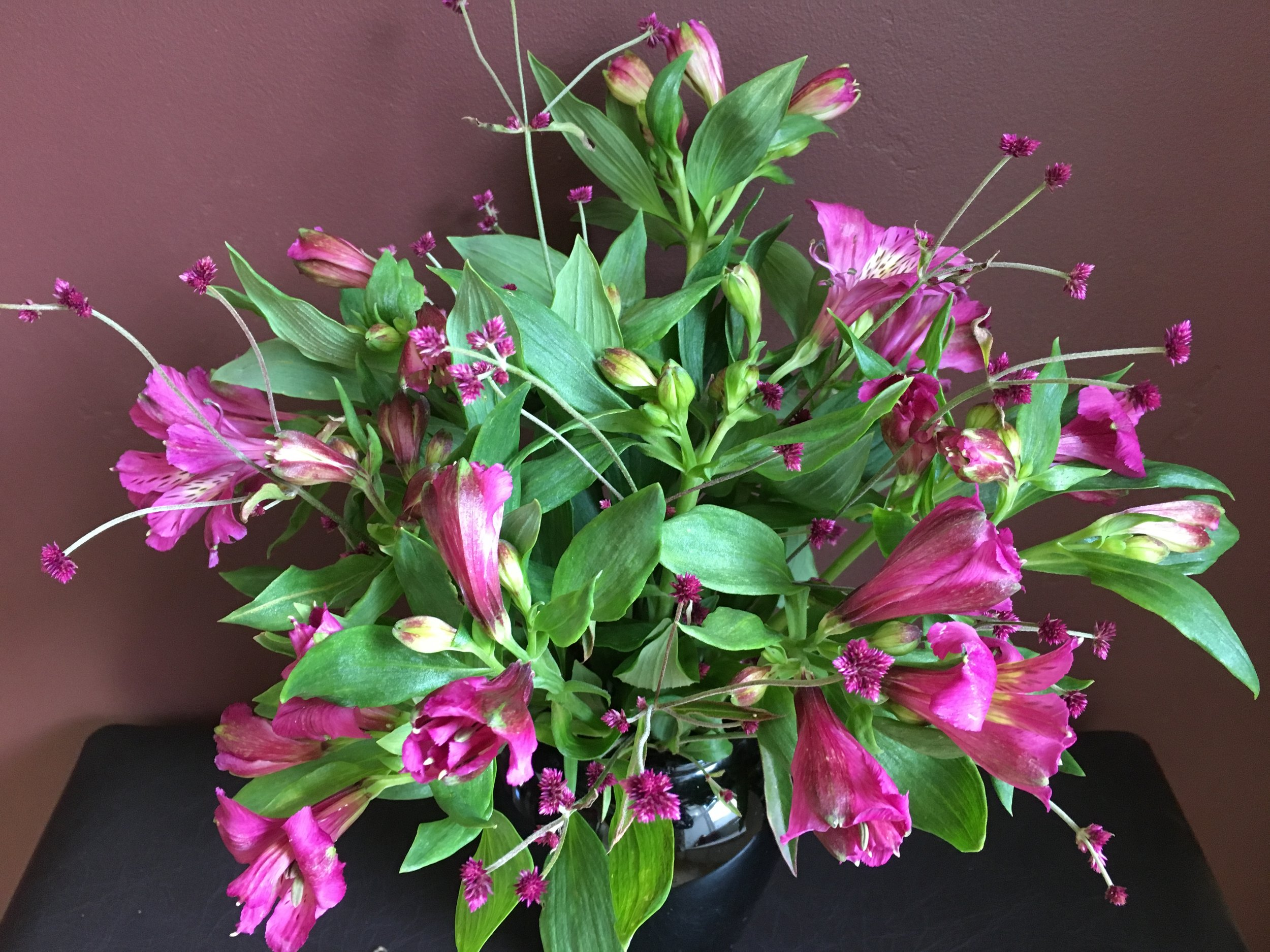 More magenta is always an option—in cauliflower or garden flowers. Alstromeria and gomphrena paired in a late winter bouquet.