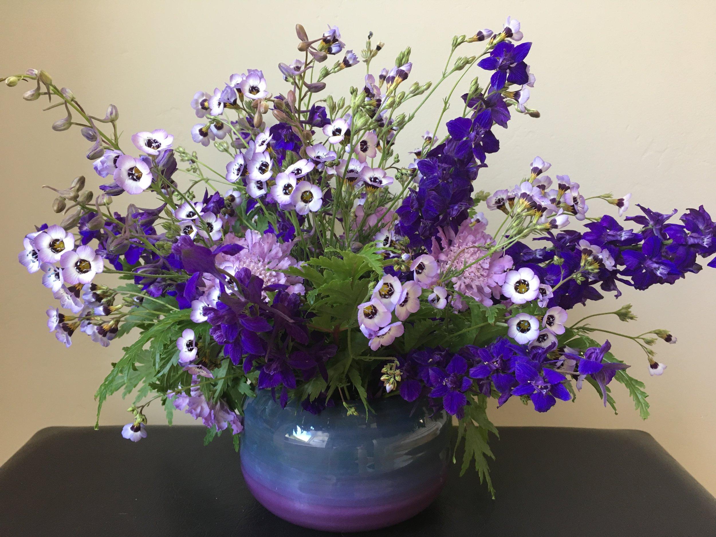 Larkspur, gilia tricolor, scabiosa make a spring bouquet with geranium foliage as a base.
