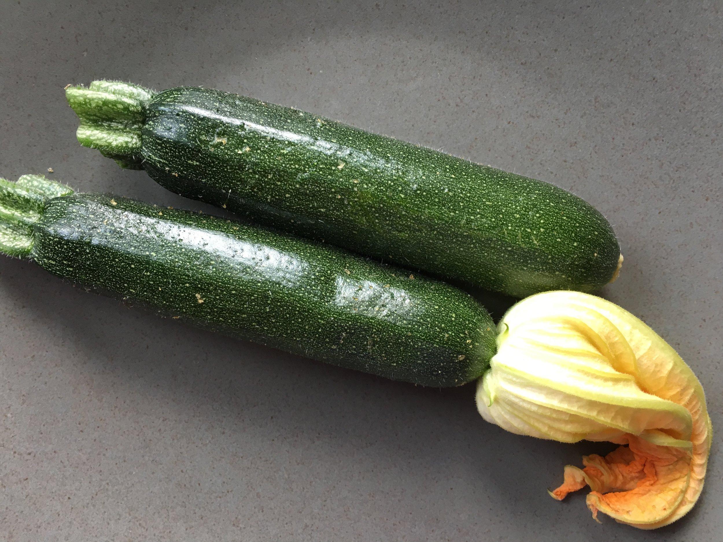 Zucchini 95% water