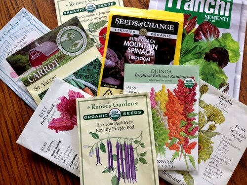 Seed choices for the Second Season Garden.