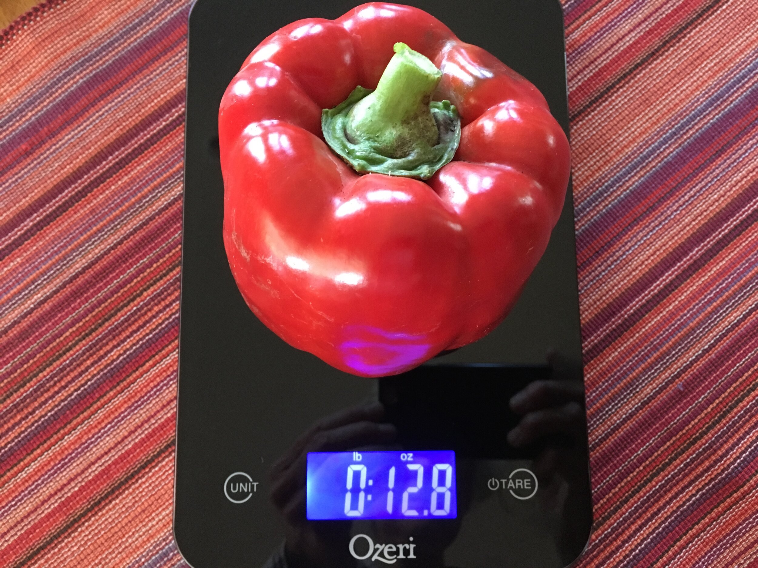 'Red Beauty' bell pepper