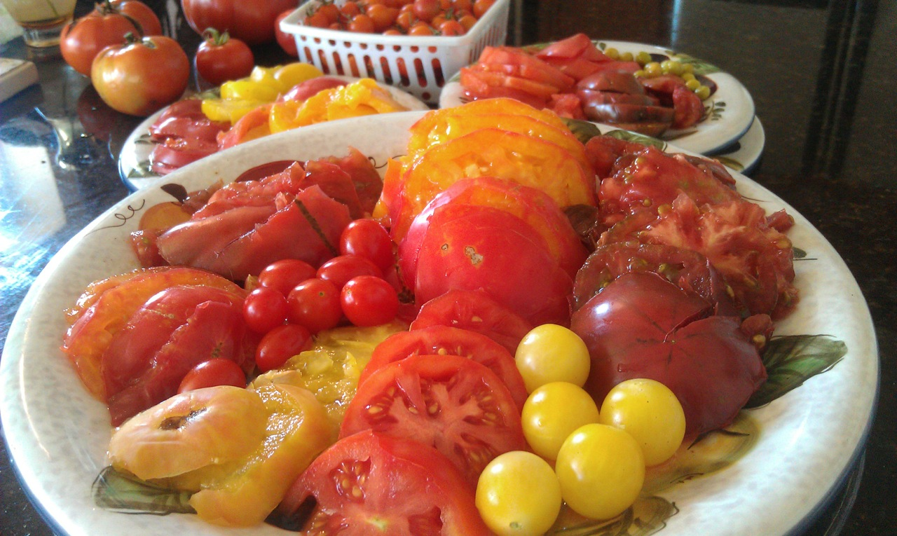 Harvest & Preserve - HARVEST AND PRESERVE YOUR VEGGIES FOR THE TASTE OF SUMMER ALL WINTER