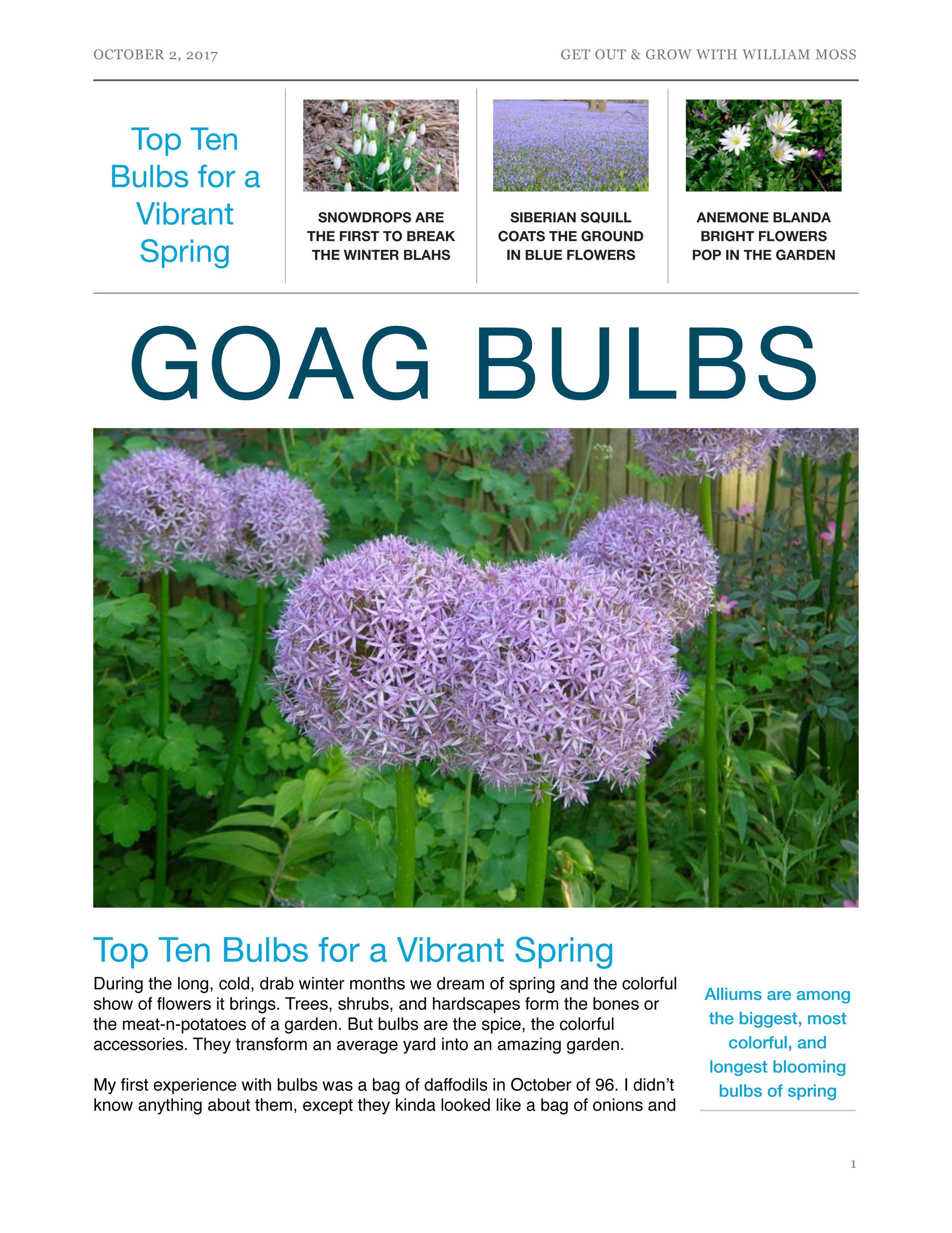 goag_top_bulbs 1.jpg