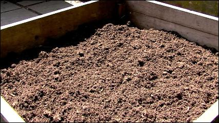 Stash your brown material now for next year's compost