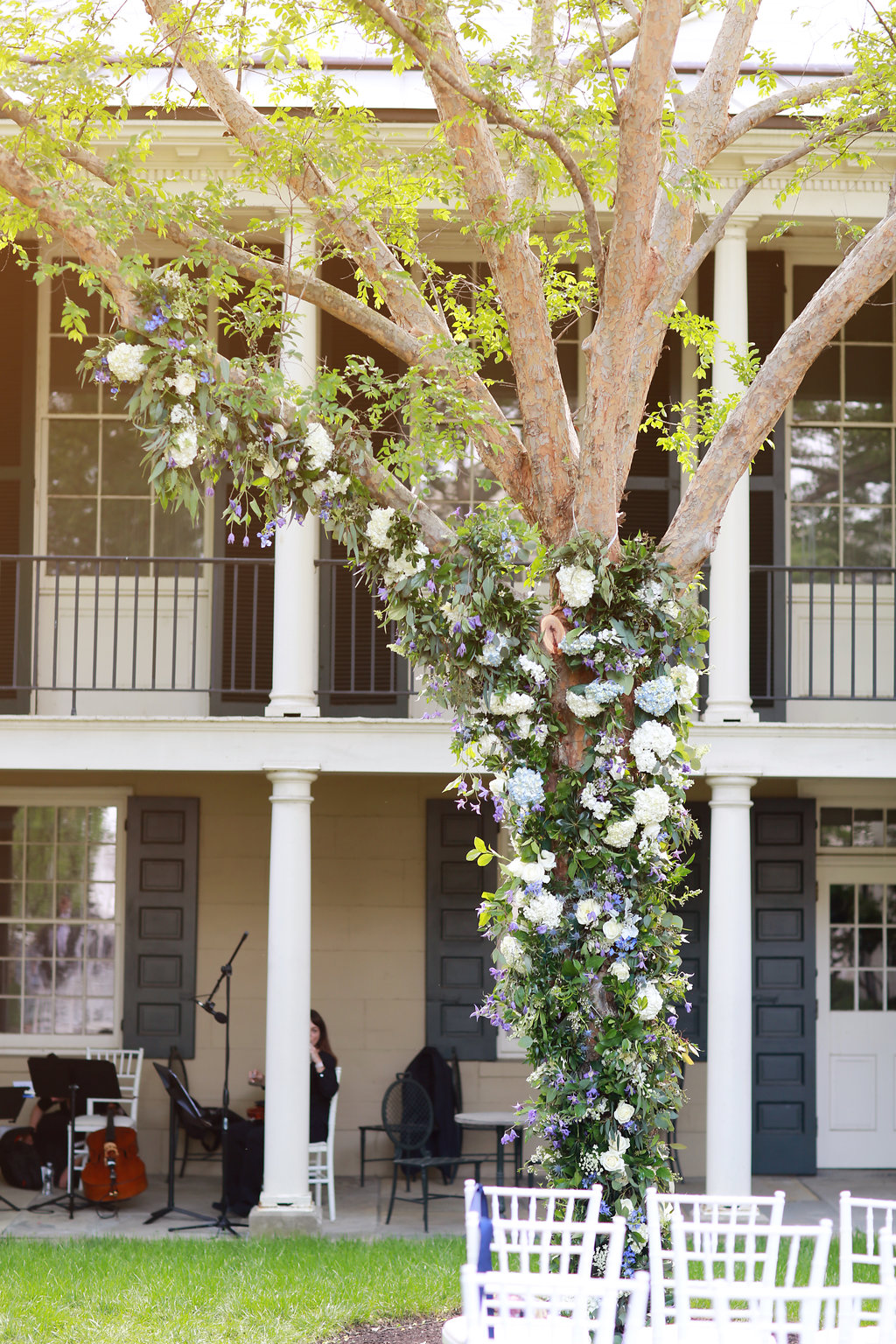 Outdoor spring wedding ceremony arch using tree at Cincinnati's Taft Museum with blue and white florals and Mediterranean greenery. Florals by Yellow Canary www.yellowcanaryonline.com