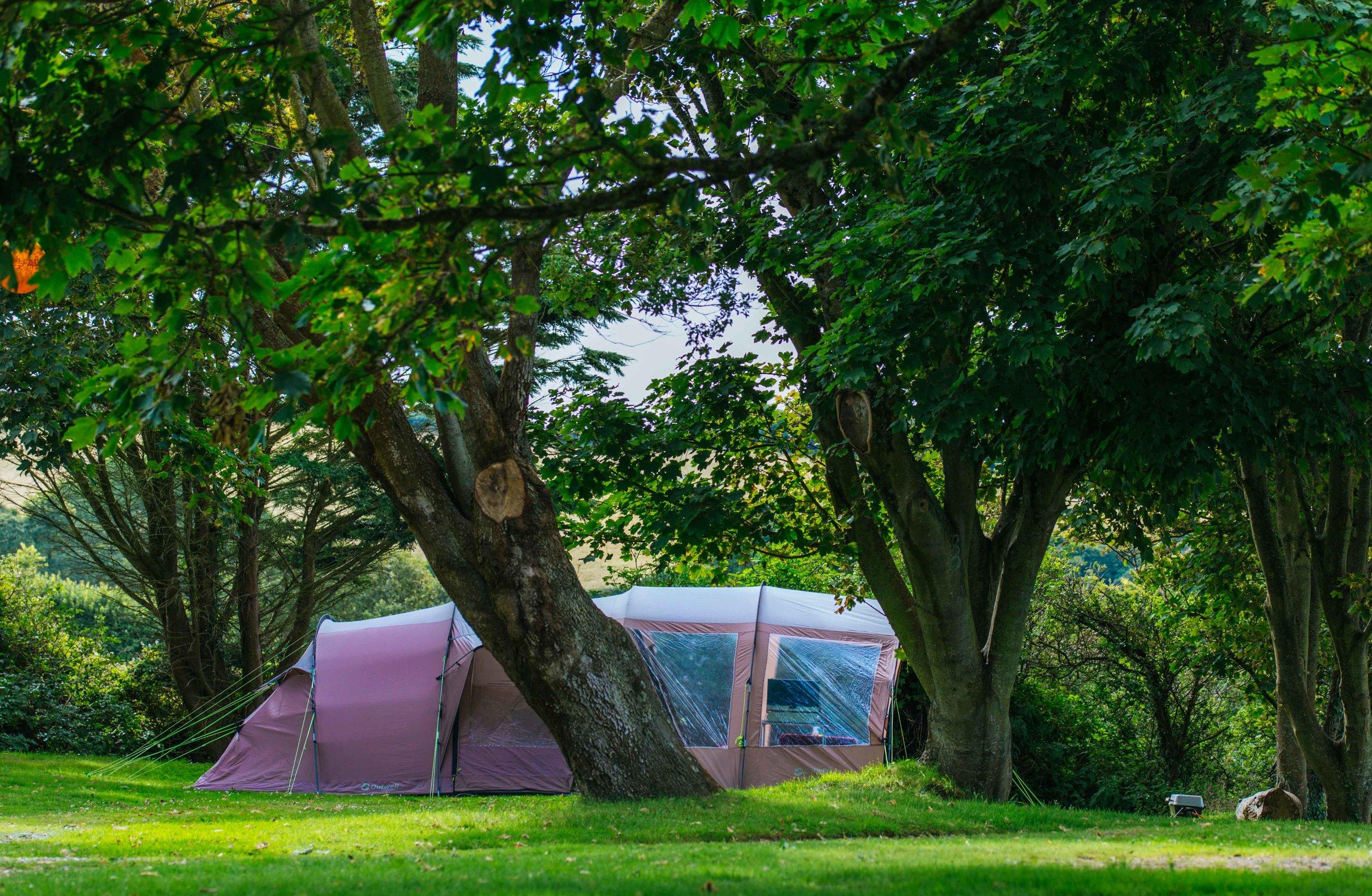 Little Meadow Campsite web-50.jpg