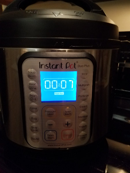 - I replaced the Crock-Pot with a 6-quart size Instant Pot – a lot more function