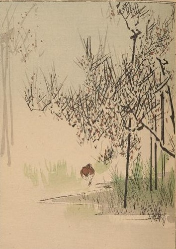 - Wantanabe, Seitei. Seitei kachō gafu v. 2. Okura Mogabe, Toyko, Meije 23. 1890. Available from Smithsonian Libraries here. I enjoyed the Japanese artwork…like the type of nature photography I like to do. I wanted to be in the place seeing a bird walking in a wetland – perhaps it was early morning.