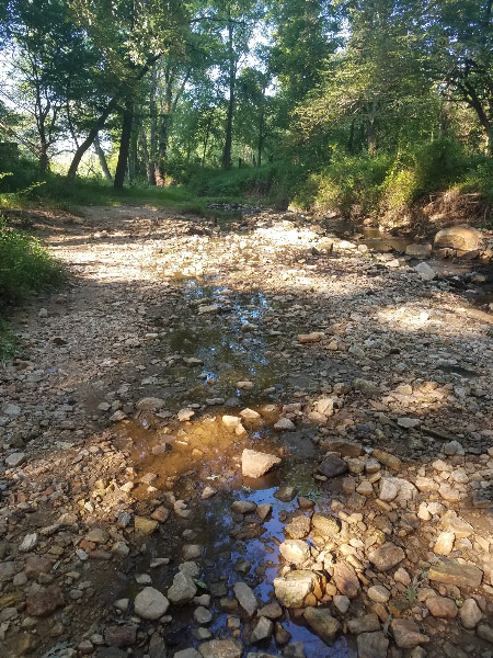 - When the water is high – there are two paths for the stream in the old 'beach' area. The one in the upper left is the main channel; the one in the middle of the picture is no longer flowing and will dry up if we don't get another big rain this week.