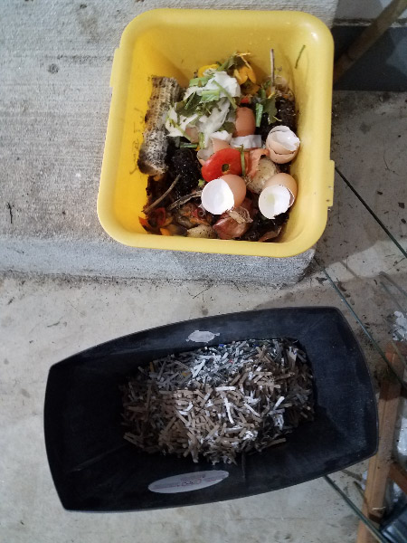 - I put the kitchen scraps on top and carried it around to the compost bin located the back of the back yard. It was a little heavier than I expected…but I managed.