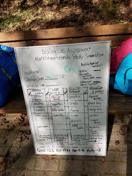 - This time the white board worked very well to summarize the macroinvertebrates the students found and identified.