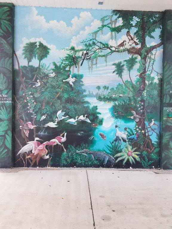 - Then we headed off to Dixie Crossroads (restaurant) for lunch. I took a picture of the mural as I came out of the restaurant – it featured a lot of the birds we had been seeing.